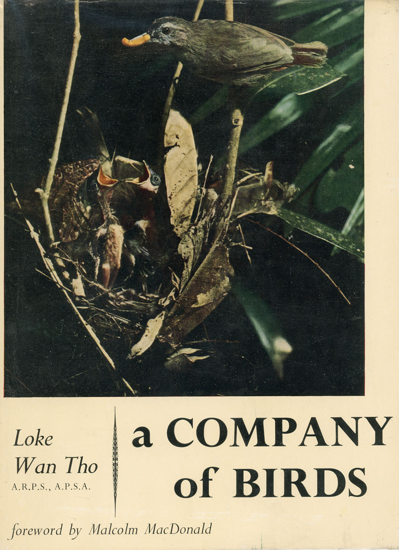 Loke Wan Tho – A Company of Birds